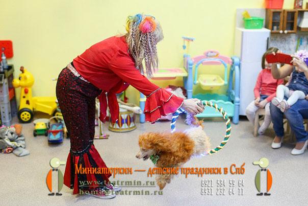 дрессировнная собачка на детском празднике